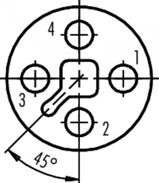 Binder Kabelstecker T kodiert Serie 813